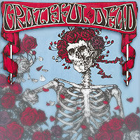 Grateful Dead skull and roses